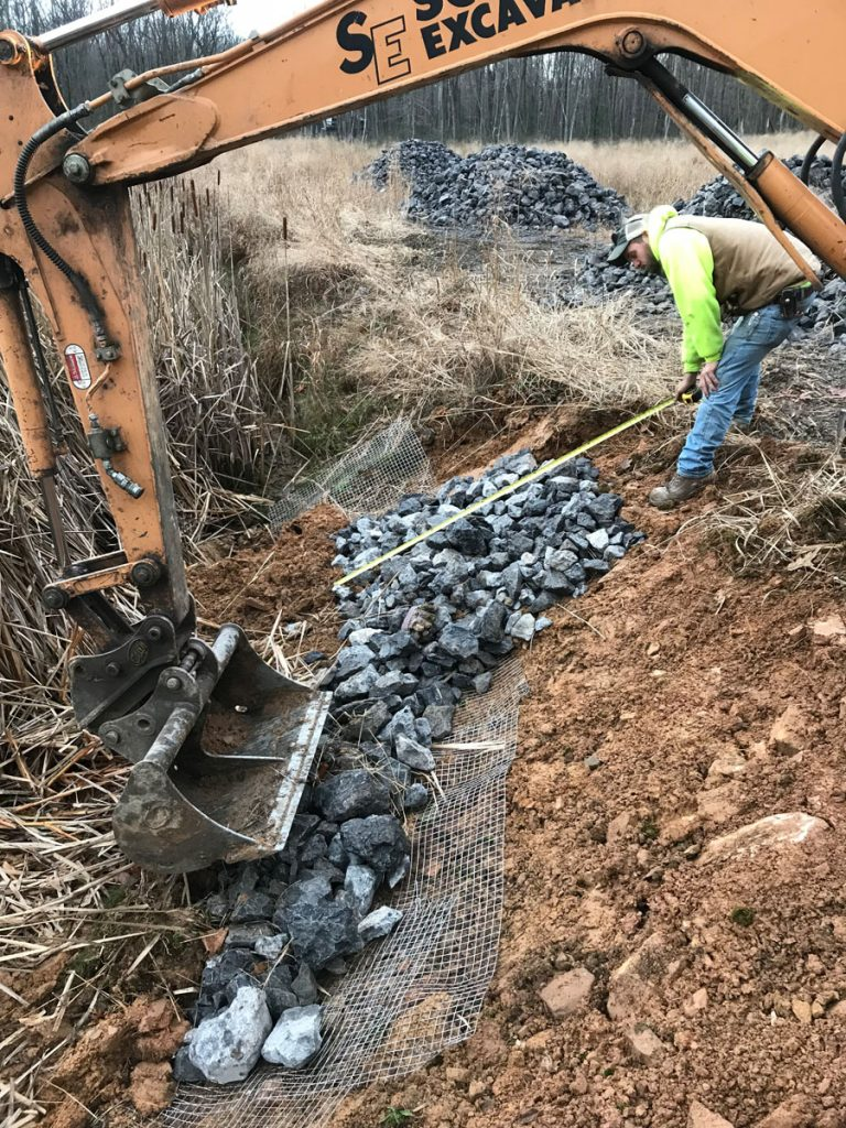 Bald Eagle State Forest Reclaimed Wetlands